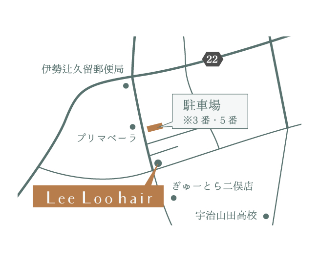 Lee Loo hair map